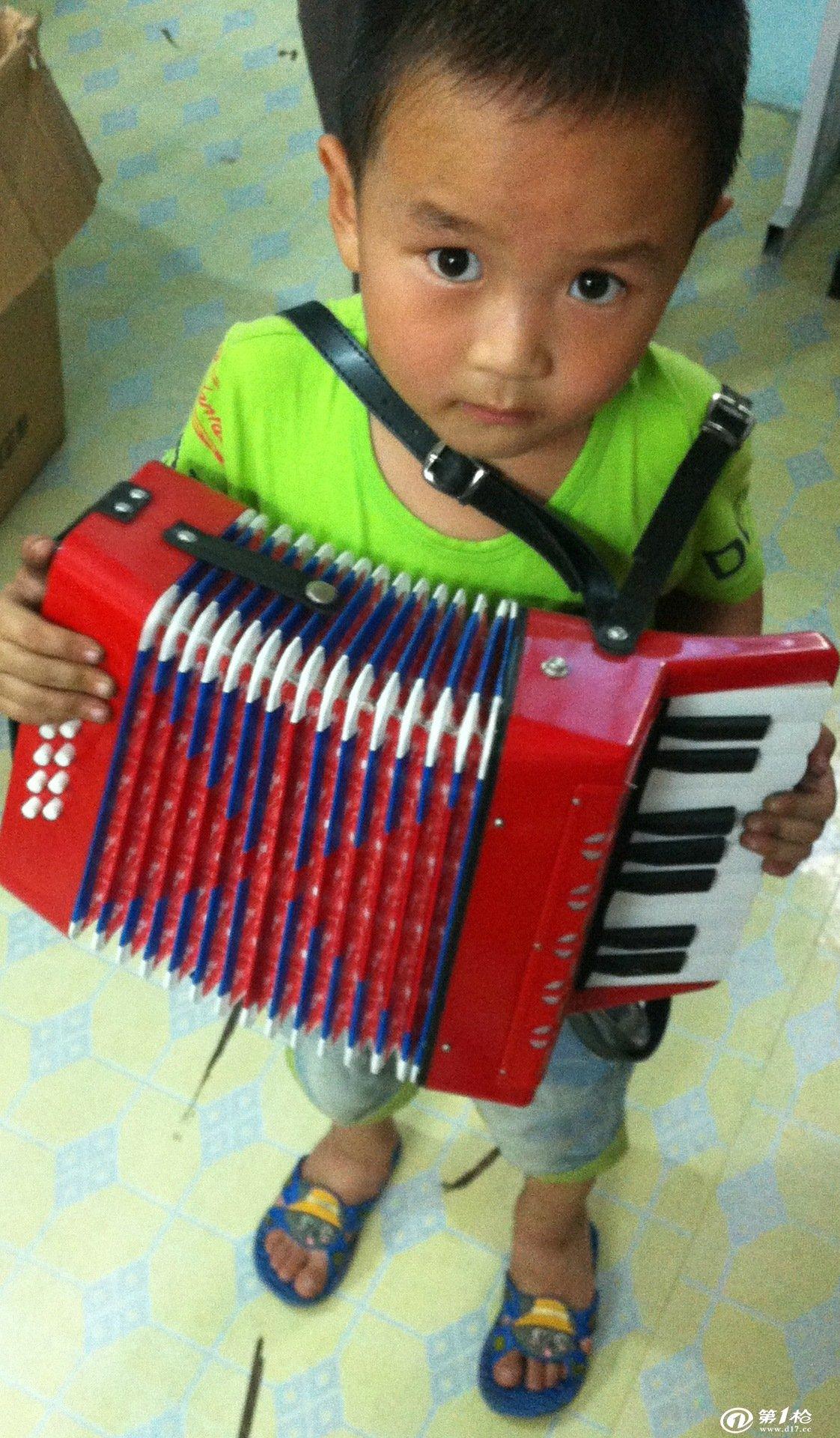 从结构,形态上看,大致可分为四类,即全音阶手风琴,半音阶手风琴,键钮