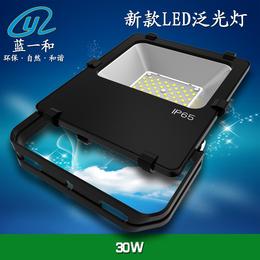 蓝一和新款RL泛光灯外壳 30W投光灯套件 LED投射灯套件