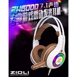 磁动力耳机ZH600D头戴式麦网吧游戏网咖专用电竞