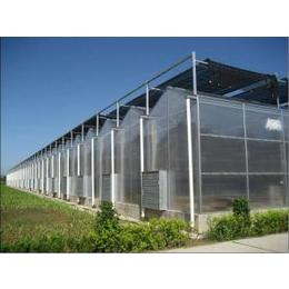 其实科技 V8-FH型Venlo式智能阳光板温室