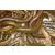 淡水鲤鱼苗批发 观赏锦鲤鱼苗价格 放生泥鳅鱼苗批发价格缩略图3