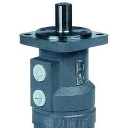 注塑机液压马BM2-250,BM2-315厂价直供