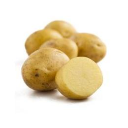 新鲜蔬菜土豆批发价格