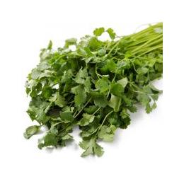 新鲜蔬菜本地芹菜批发价格