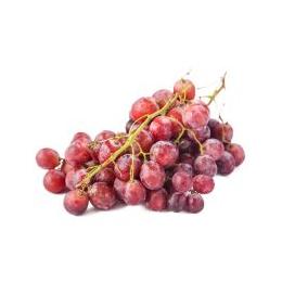 新鲜水果葡萄批发价格