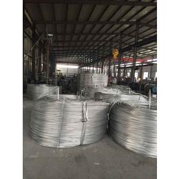 征帆 JL G1A 150 25 钢芯铝绞线 国标 厂家直供