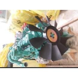 20KW天然气沼气发动机 发电机组