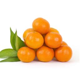新鲜水果桔子批发价格