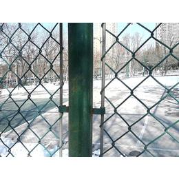 求购勾花铁丝网学校体育场隔离使用