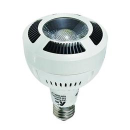 供应<em>LED</em>光源KPE-PAR30-B2