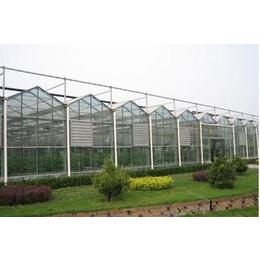 专业连栋阳光板温室设计与安装
