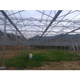 哪里有专业建设智能玻璃温室郑州奥农苑农业科技专业温室建造企业