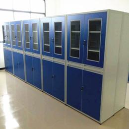 奥宇实业 文件柜药品存放柜 试剂柜 高柜