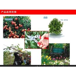 厂家直销华东日本高级工具钢园林园艺剪 修枝剪 果枝剪 树枝剪