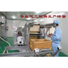 OEM代工生产蜂蜜 蜂产品灌装代加工