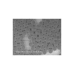 BioMag环氧基磁珠