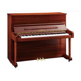 钢琴维修,钢琴,苏州大山钢琴城