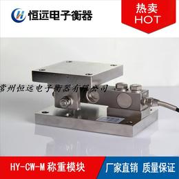 江阴称重模块厂家 HY-CW-M动载称重模块