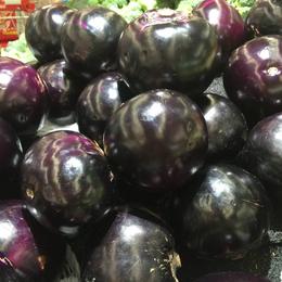 增城食堂蔬菜公司-鼎魁农产品有限公司