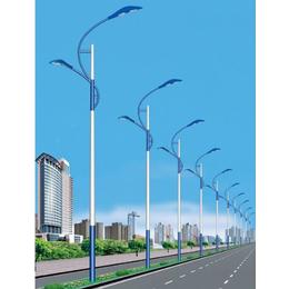 四川内江路灯厂家新炎光LED市电路灯城市道路照明路灯价格参数