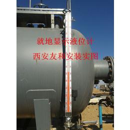 侧装磁翻板液位计 磁致伸缩液位计 雷达液位计选西安友和
