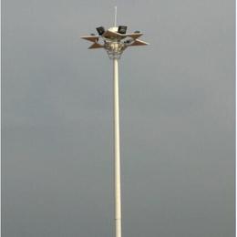 共青市市政公园景观灯