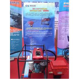 防汛抗洪-便携式小型打桩机N道路桥梁专用小型防汛打桩机植桩机