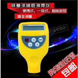 DR220涂镀层测厚仪 油漆涂层粉末塑料电泳防腐层厚度