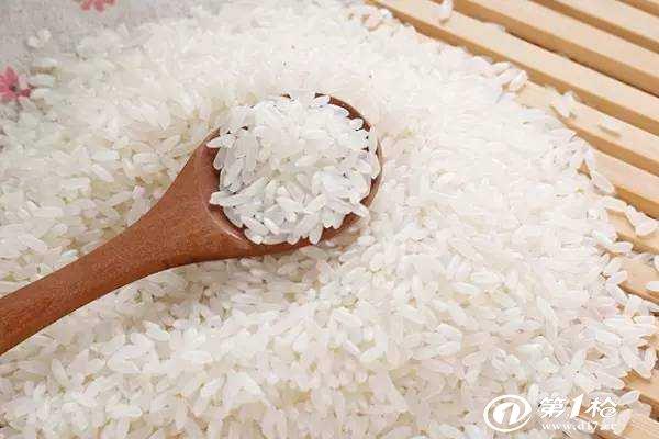 大米生虫有什么影响?怎么防止大米生虫?