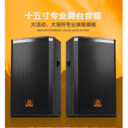 广州狮乐专业木制会议室音响设备bm12