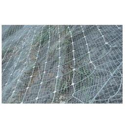 厂家供应边坡锚固防护网奇佳防护网边坡防护网
