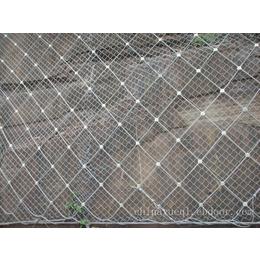 厂家供应奇佳边坡防护网SNS环形防护网被动防护网