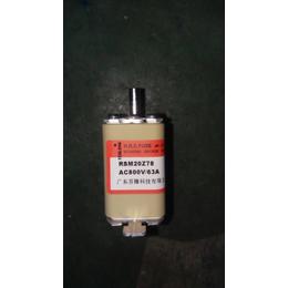 FENLONG品牌-RSM20Z78快速熔断器