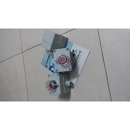 ADAH-X1PD ADAH-X1P机旁按钮盒生产供应