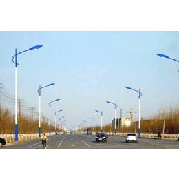 四川路灯专业生产厂家 LED路灯厂家可定制