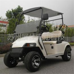 上海厂家直销2座老人代步车 景区游览车 高尔夫球车价格