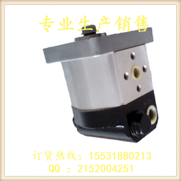 新渤海 正鑫齿轮泵 CBT-E306液压齿轮泵 齿轮泵厂家