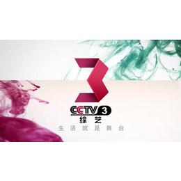2016中央电视台综艺频道广告价格单