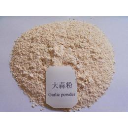 大蒜粉 调味香辛料 琦轩食品