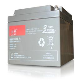 山特城堡蓄电池C12-100 UPS电源后备电池组