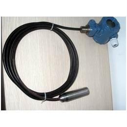 DFLP系列 投入式液位计 一体化投入式液位计
