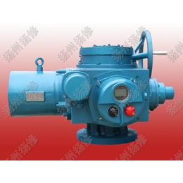 DZW180 DZZ180扭矩1800NM开关型电动执行器