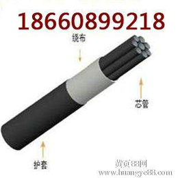 PE-ZKW8 4矿用束管 山西矿用束管