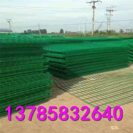 牧场养殖隔离网   绿色防锈圈养网   圈东西用什么