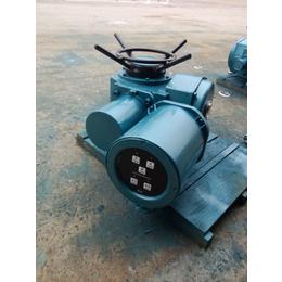 开关型电动装置DZW45-24-A00-WK
