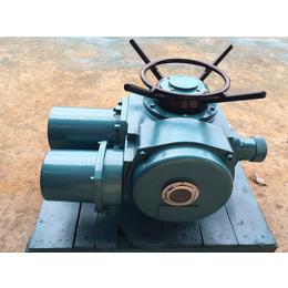 阀门电动装置DZW10-24-A00-DS1