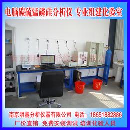 供应火焰管成分分析仪 南京明睿MR-CS-F型