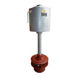 低水头水力发电机组 励磁 轴流式水轮发电机
