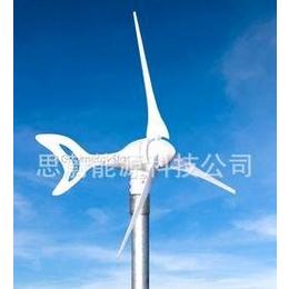 300瓦全球新款高速风力发电机(厂家直销)