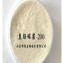 厂家直供山东绿陇粪肠球菌200亿纯度高质量好